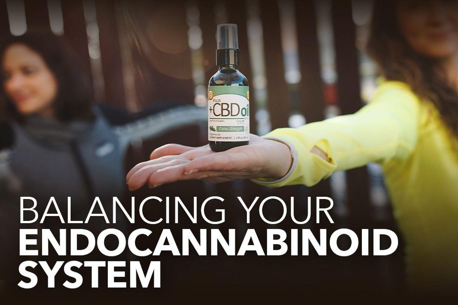 Balancing your Endocannabinoid System