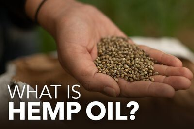 What Is Hemp Oil & Where Does It Come From?
